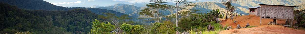 Trekking the Kokoda Track with Back Track