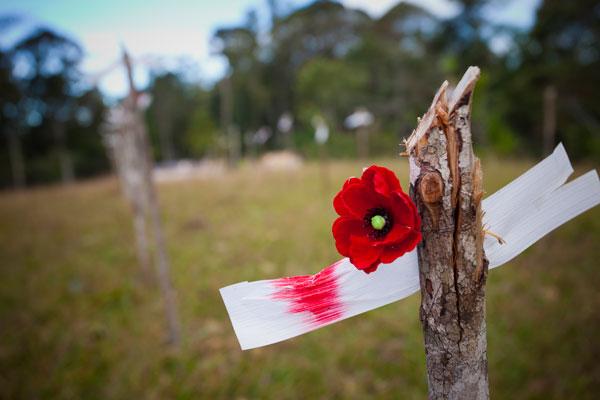 Brigade Hill, Kokdoa Trail, Lest We Forget, Damian Caniglia